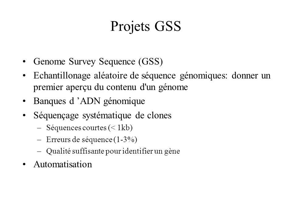 Projets GSS Genome Survey Sequence (GSS) Echantillonage aléatoire de séquence génomiques: donner un premier aperçu du contenu d'un génome Banques d AD