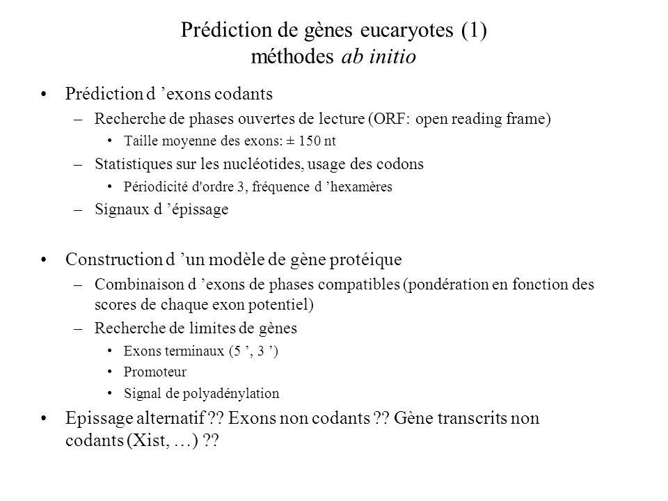 Prédiction de gènes eucaryotes (1) méthodes ab initio Prédiction d exons codants –Recherche de phases ouvertes de lecture (ORF: open reading frame) Ta