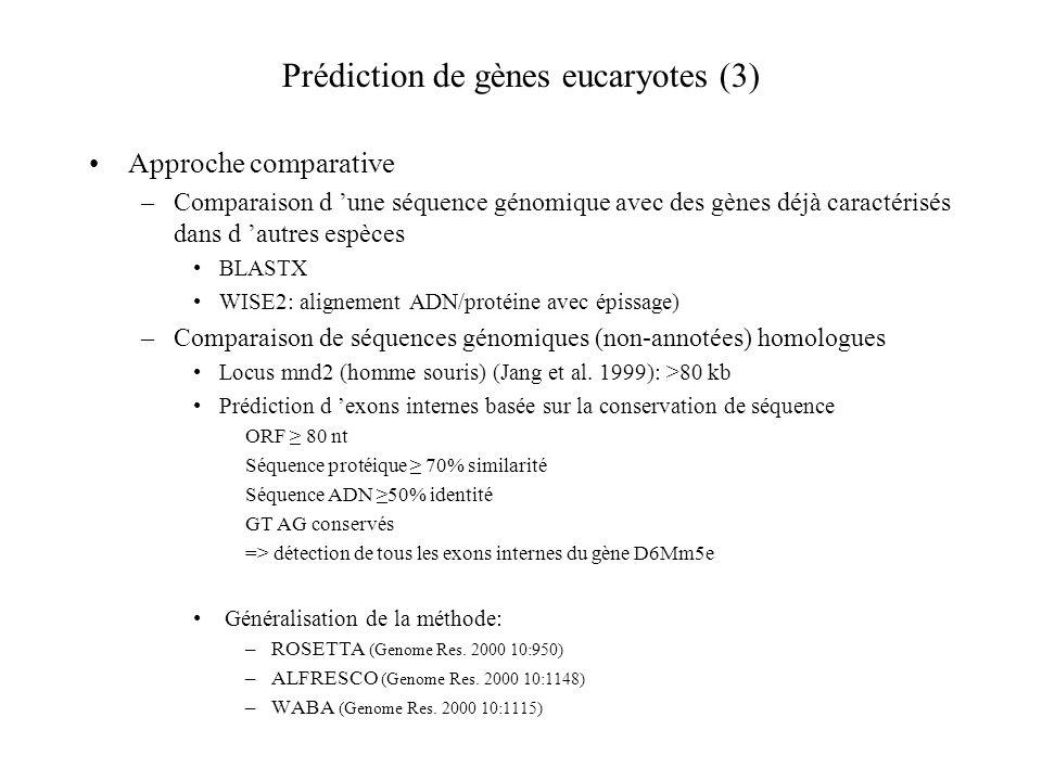 Prédiction de gènes eucaryotes (3) Approche comparative –Comparaison d une séquence génomique avec des gènes déjà caractérisés dans d autres espèces B