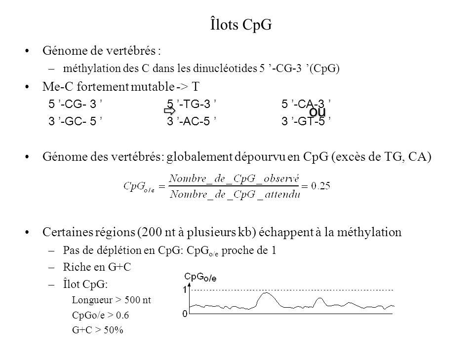 Îlots CpG Génome de vertébrés : –méthylation des C dans les dinucléotides 5 -CG-3 (CpG) Me-C fortement mutable -> T 5 -CG- 3 5 -TG-3 5 -CA-3 3 -GC- 5