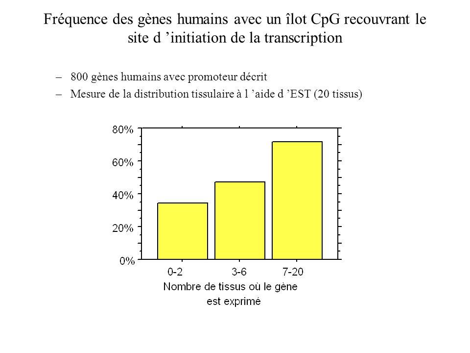 Fréquence des gènes humains avec un îlot CpG recouvrant le site d initiation de la transcription –800 gènes humains avec promoteur décrit –Mesure de l
