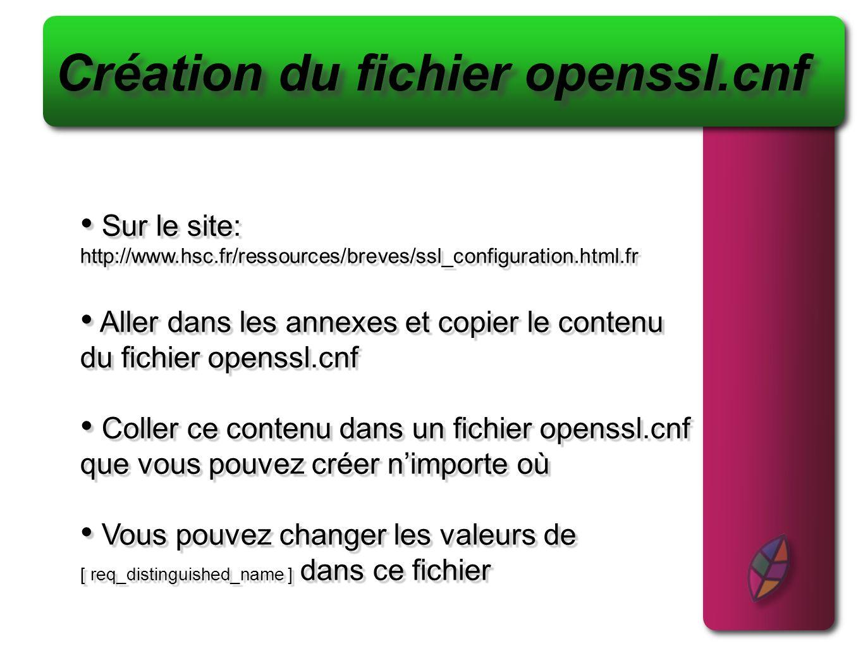 Sur le site: http://www.hsc.fr/ressources/breves/ssl_configuration.html.fr Aller dans les annexes et copier le contenu du fichier openssl.cnf Coller c