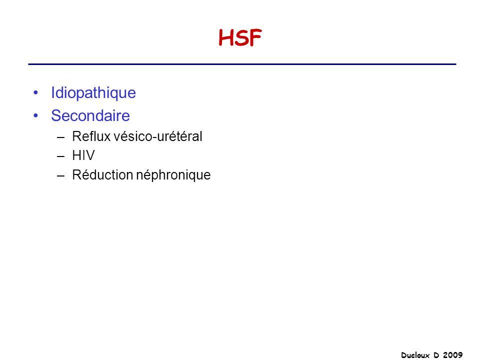 Ducloux D 2009 HSF Idiopathique Secondaire –Reflux vésico-urétéral –HIV –Réduction néphronique