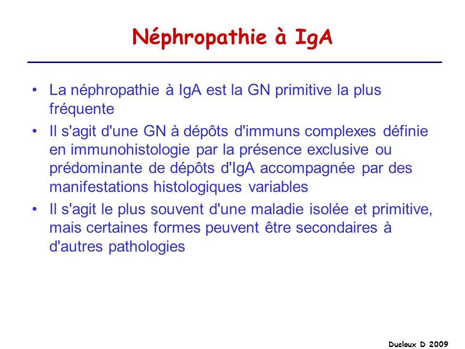 Ducloux D 2009 Néphropathie à IgA La néphropathie à IgA est la GN primitive la plus fréquente Il s'agit d'une GN à dépôts d'immuns complexes définie e