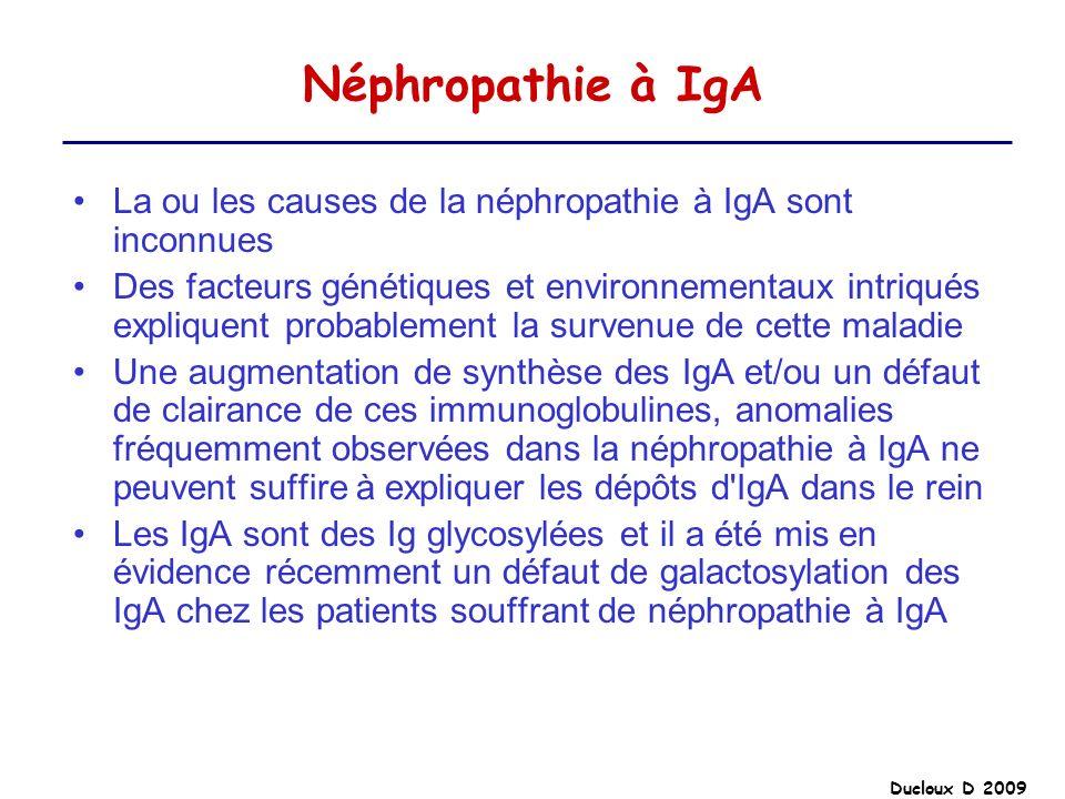 Ducloux D 2009 Néphropathie à IgA La ou les causes de la néphropathie à IgA sont inconnues Des facteurs génétiques et environnementaux intriqués expli