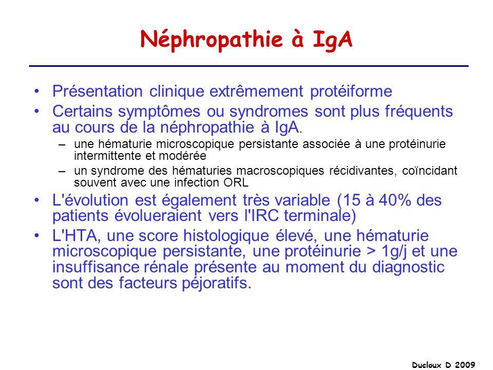 Ducloux D 2009 Néphropathie à IgA Présentation clinique extrêmement protéiforme Certains symptômes ou syndromes sont plus fréquents au cours de la nép