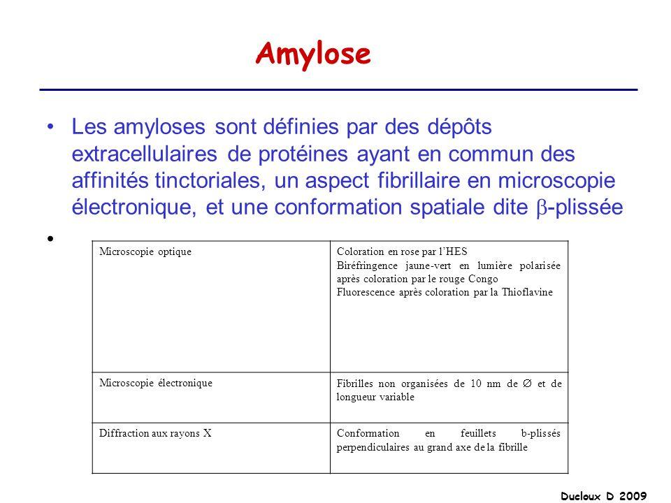 Ducloux D 2009 Amylose Les amyloses sont définies par des dépôts extracellulaires de protéines ayant en commun des affinités tinctoriales, un aspect f
