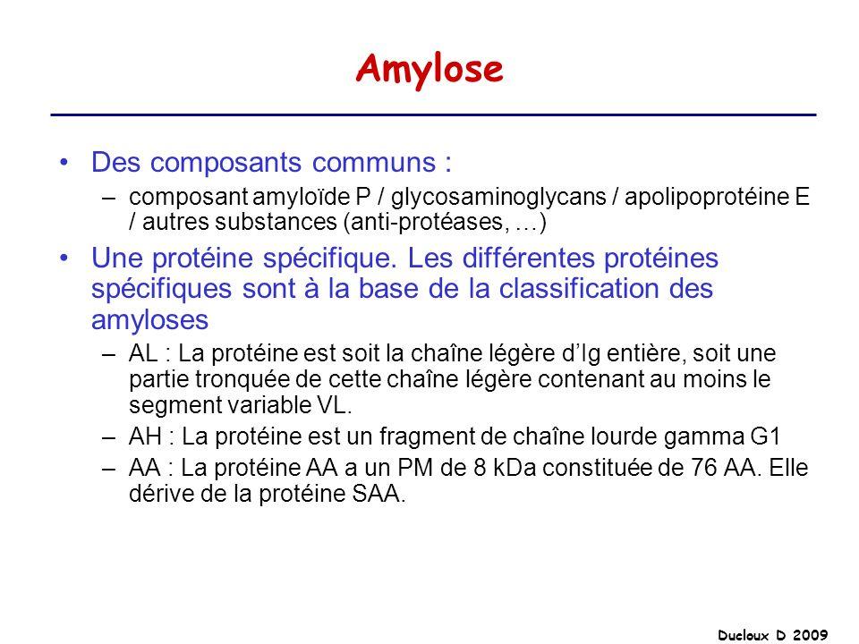 Ducloux D 2009 Amylose Des composants communs : –composant amyloïde P / glycosaminoglycans / apolipoprotéine E / autres substances (anti-protéases, …)