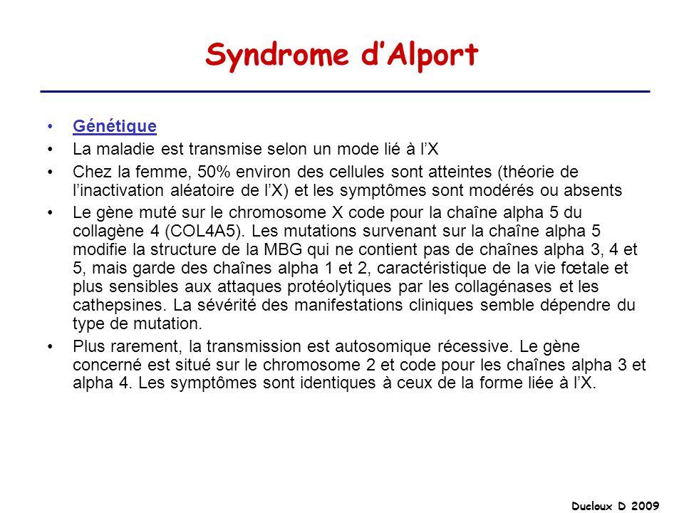 Syndrome dAlport Génétique La maladie est transmise selon un mode lié à lX Chez la femme, 50% environ des cellules sont atteintes (théorie de linactiv