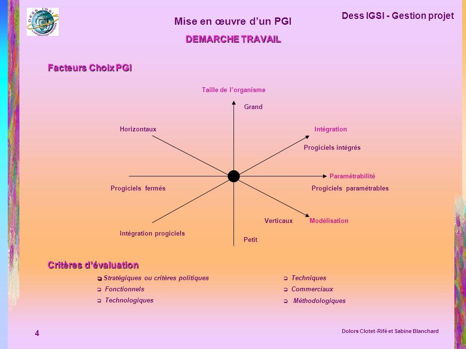 4 Dess IGSI - Gestion projet Dolors Clotet-Rifé et Sabine Blanchard Mise en œuvre dun PGI DEMARCHE TRAVAIL Facteurs Choix PGI Taille de lorganisme Gra
