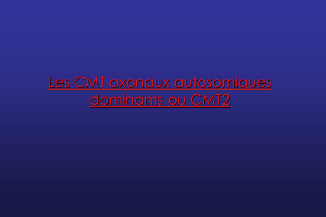 Le CMT2 La plupart des gènes ont été identifiés au cours des 5 dernières années Une forme fréquente se dégage : le CMT2A et les mutations du gène MFN2 Plusieurs gènes sont associés à des phénotypes chevauchants entre CMT2 et neuropathies motrices distales héréditaires Certaines particularités phénotypiques permettent dorienter lanalyse génétique