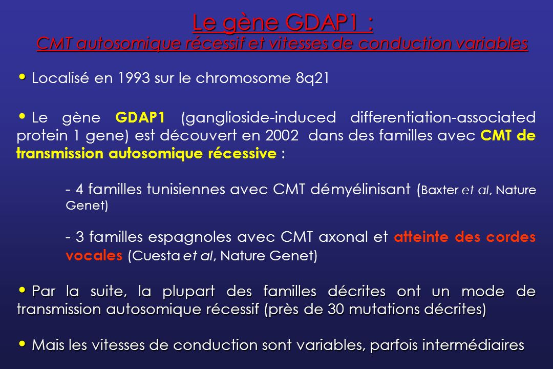 Localisé en 1993 sur le chromosome 8q21 Le gène GDAP1 (ganglioside-induced differentiation-associated protein 1 gene) est découvert en 2002 dans des f