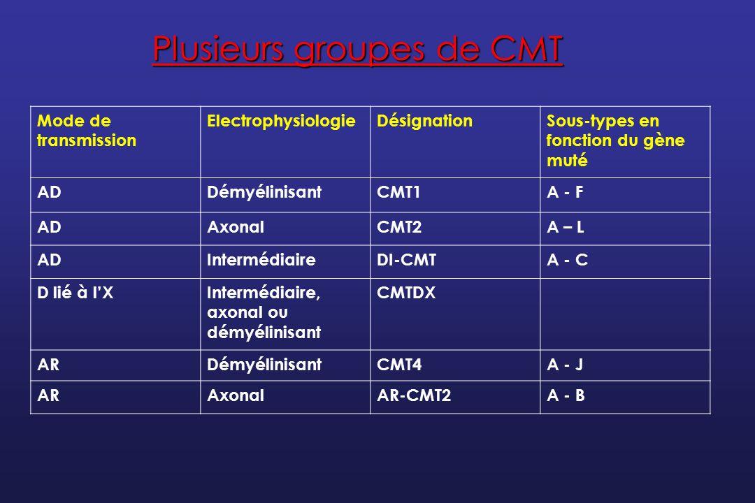 Les difficultés de la classification Certains gènes sont associés à des formes démyélinisantes, intermédiaires ou axonales Certains gènes sont associés à des formes axonales sensitivo-motrices ou purement motrices Certains gènes sont associés à un mode de transmission autosomique dominant ou autosomique récessif