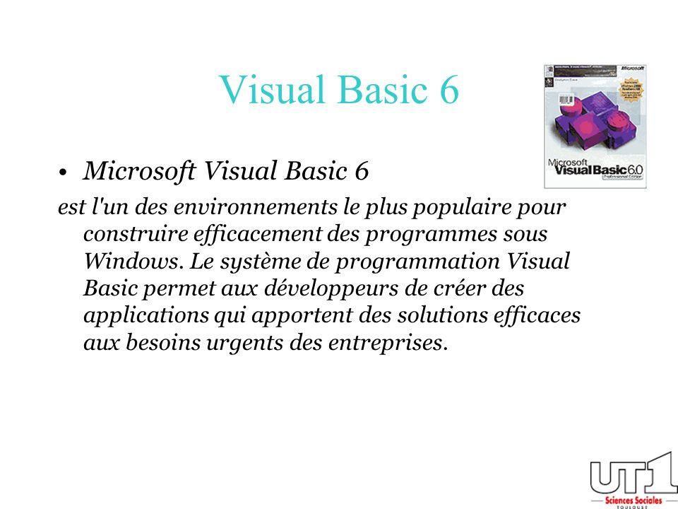 Visual Basic 6 Microsoft Visual Basic 6 est l'un des environnements le plus populaire pour construire efficacement des programmes sous Windows. Le sys