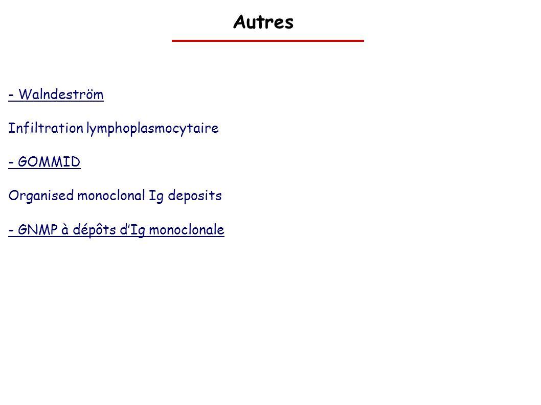 Autres - Walndeström Infiltration lymphoplasmocytaire - GOMMID Organised monoclonal Ig deposits - GNMP à dépôts dIg monoclonale