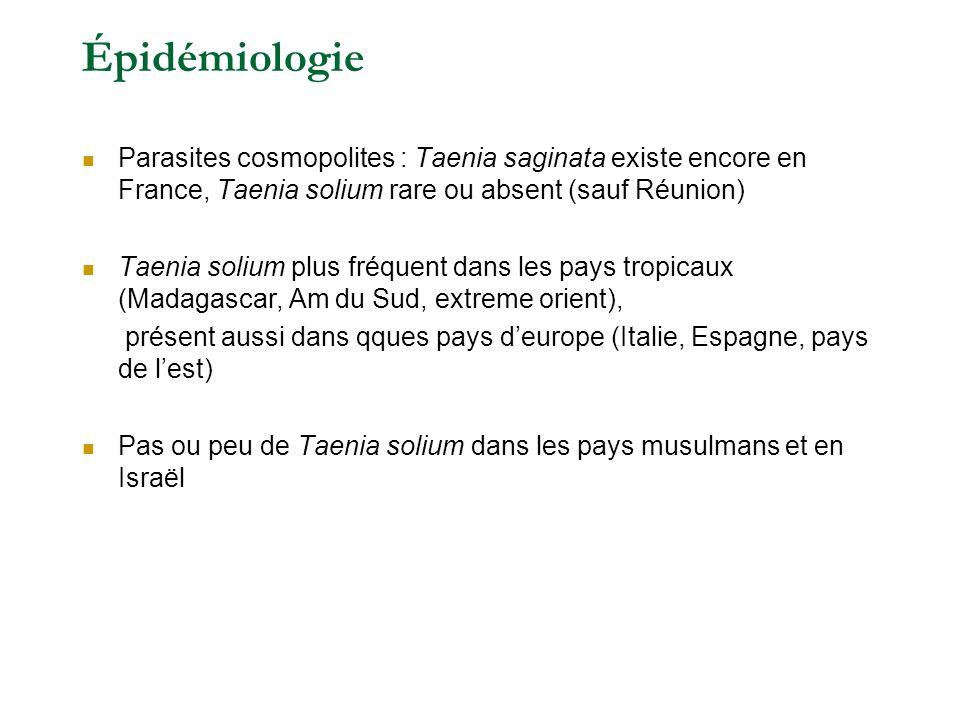 Épidémiologie Parasites cosmopolites : Taenia saginata existe encore en France, Taenia solium rare ou absent (sauf Réunion) Taenia solium plus fréquent dans les pays tropicaux (Madagascar, Am du Sud, extreme orient), présent aussi dans qques pays deurope (Italie, Espagne, pays de lest) Pas ou peu de Taenia solium dans les pays musulmans et en Israël