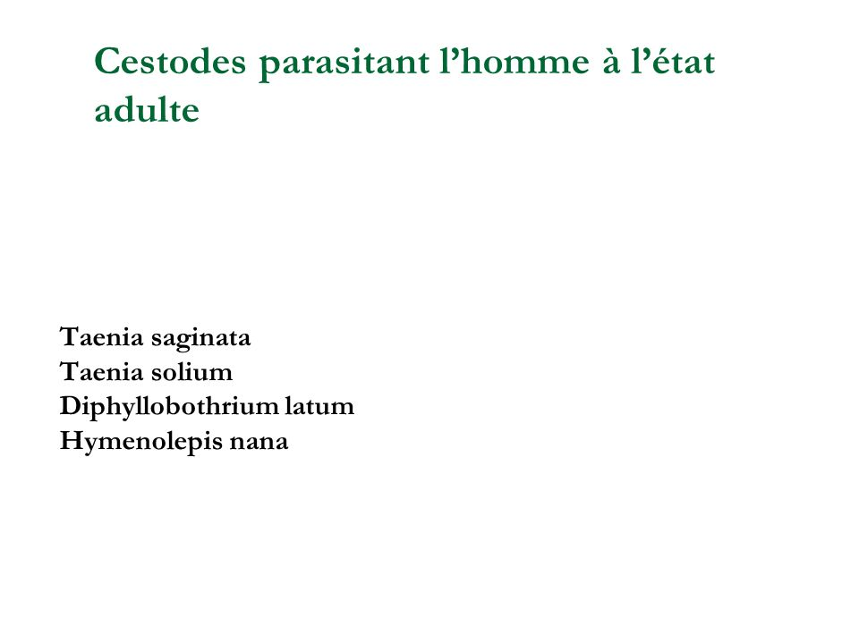 Taenia saginata Taenia solium Diphyllobothrium latum Hymenolepis nana Cestodes parasitant lhomme à létat adulte