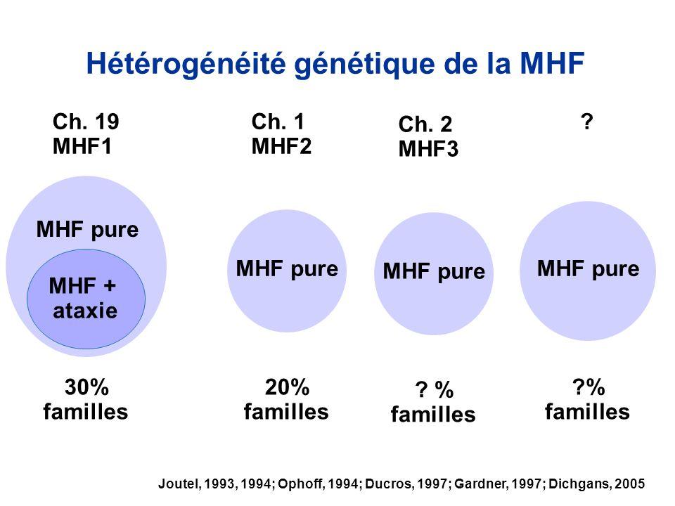 30% familles 20% familles Hétérogénéité génétique de la MHF Ch. 19 MHF1 Ch. 1 MHF2 ? ?% familles MHF + ataxie MHF pure Joutel, 1993, 1994; Ophoff, 199