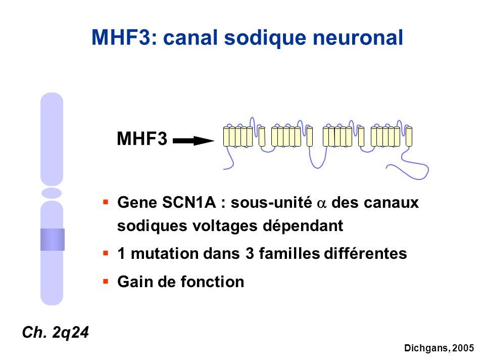 MHF3: canal sodique neuronal Ch. 2q24 MHF3 Gene SCN1A : sous-unité des canaux sodiques voltages dépendant 1 mutation dans 3 familles différentes Gain