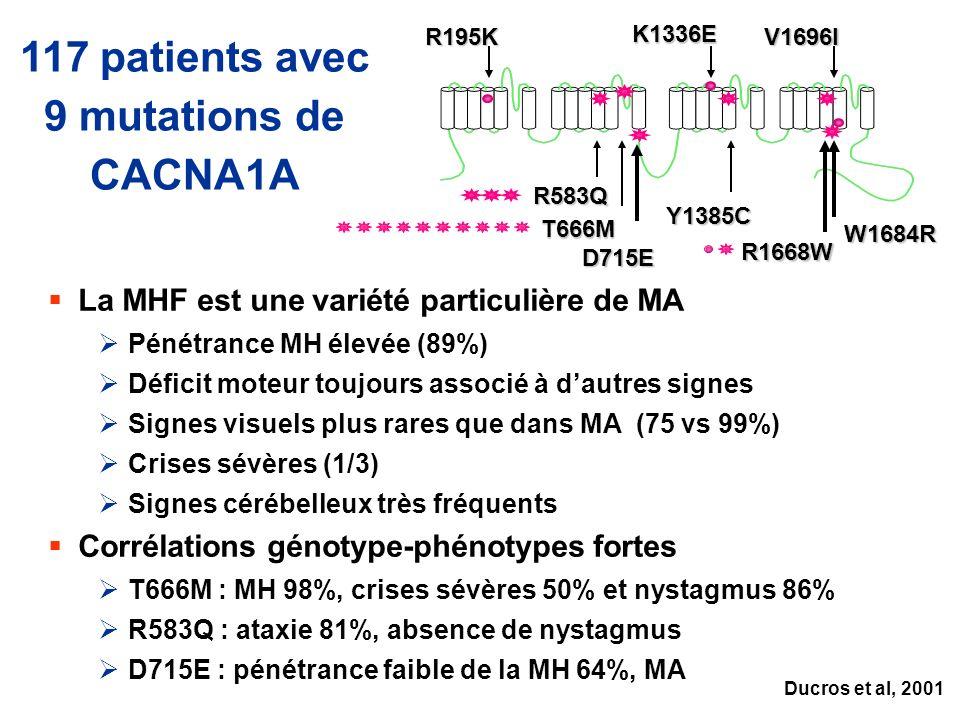 117 patients avec 9 mutations de CACNA1A La MHF est une variété particulière de MA Pénétrance MH élevée (89%) Déficit moteur toujours associé à dautre