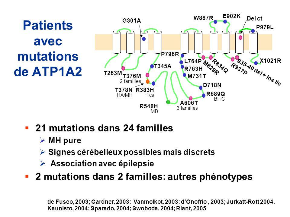 Patients avec mutations de ATP1A2 21 mutations dans 24 familles MH pure Signes cérébelleux possibles mais discrets Association avec épilepsie 2 mutati