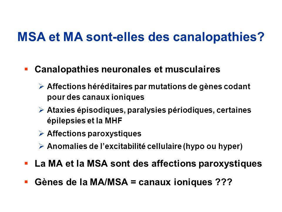 MSA et MA sont-elles des canalopathies? Canalopathies neuronales et musculaires Affections héréditaires par mutations de gènes codant pour des canaux