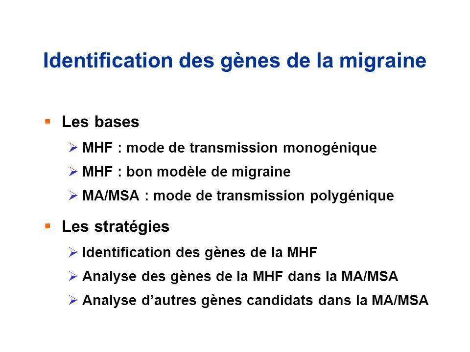 Identification des gènes de la migraine Les bases MHF : mode de transmission monogénique MHF : bon modèle de migraine MA/MSA : mode de transmission po