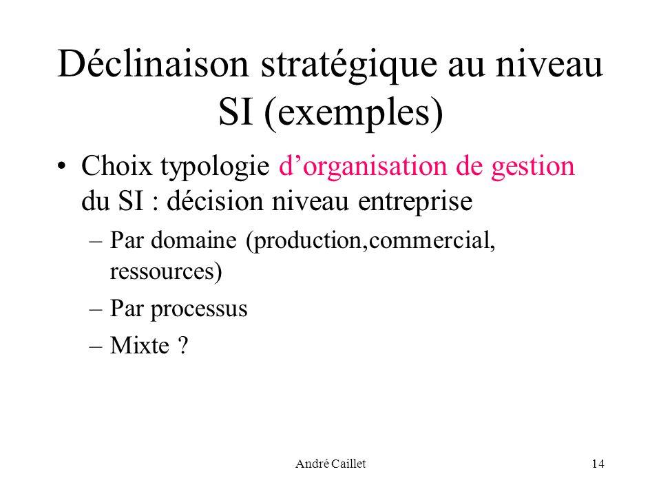 André Caillet14 Déclinaison stratégique au niveau SI (exemples) Choix typologie dorganisation de gestion du SI : décision niveau entreprise –Par domaine (production,commercial, ressources) –Par processus –Mixte ?