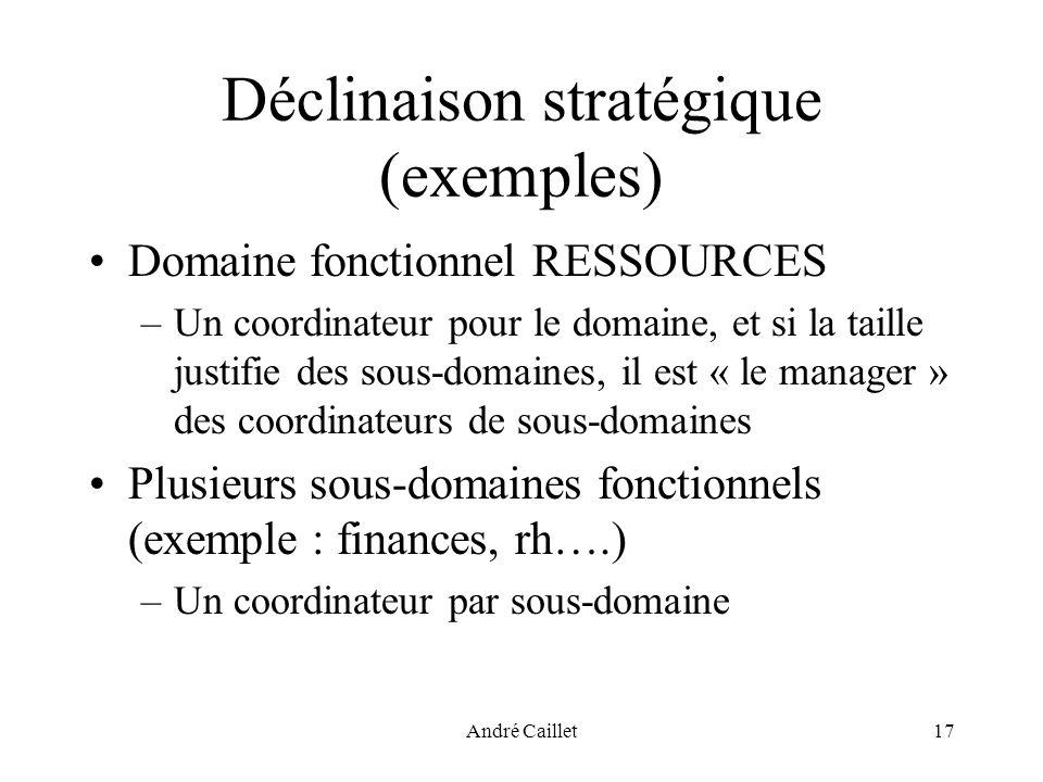 André Caillet17 Déclinaison stratégique (exemples) Domaine fonctionnel RESSOURCES –Un coordinateur pour le domaine, et si la taille justifie des sous-domaines, il est « le manager » des coordinateurs de sous-domaines Plusieurs sous-domaines fonctionnels (exemple : finances, rh….) –Un coordinateur par sous-domaine