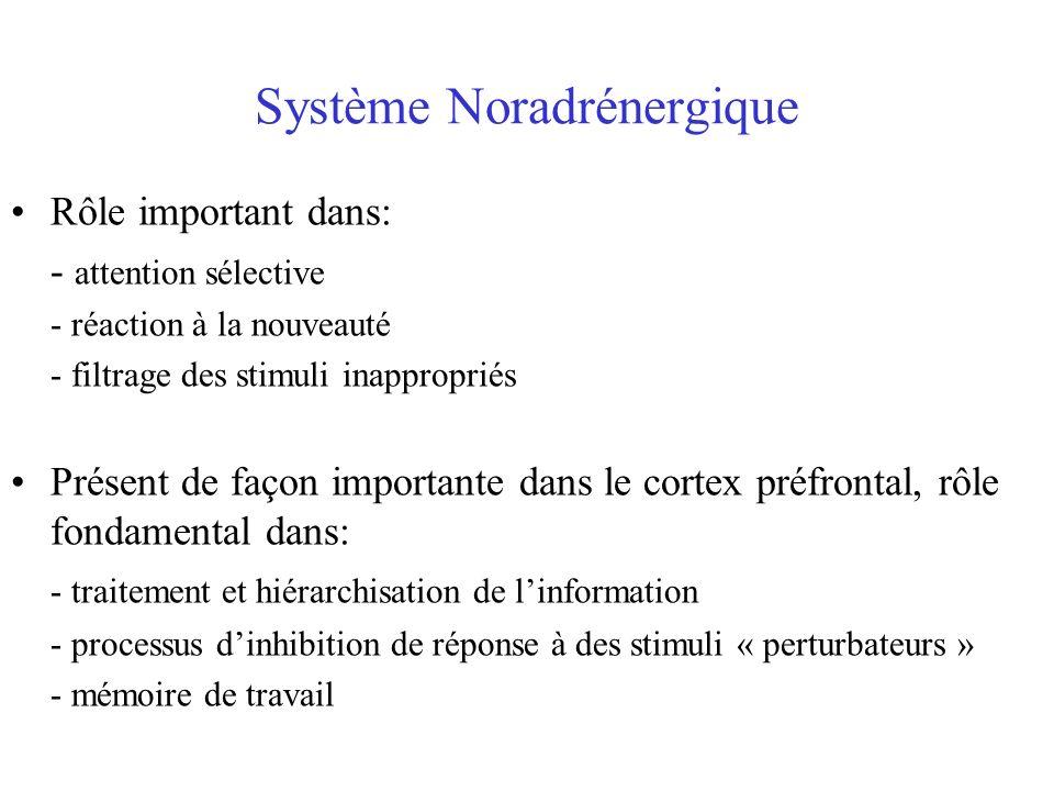 Système Noradrénergique Rôle important dans: - attention sélective - réaction à la nouveauté - filtrage des stimuli inappropriés Présent de façon impo
