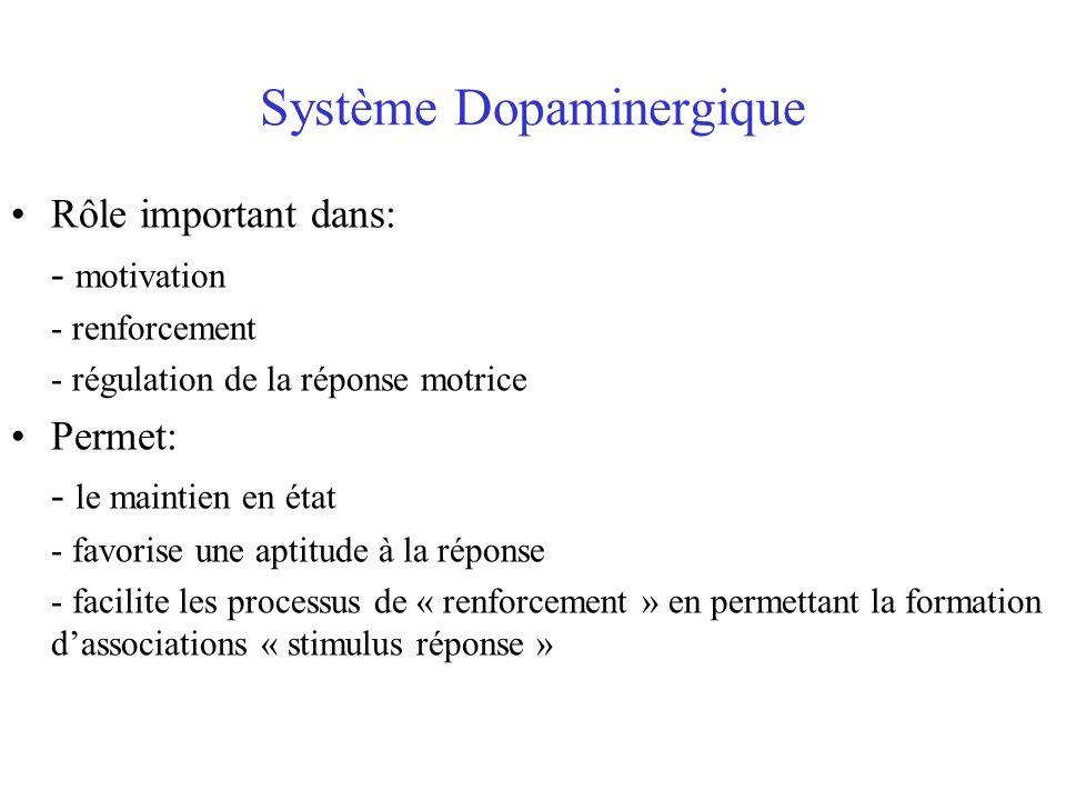 Système Dopaminergique Rôle important dans: - motivation - renforcement - régulation de la réponse motrice Permet: - le maintien en état - favorise un