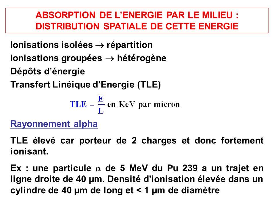 ABSORPTION DE LENERGIE PAR LE MILIEU : DISTRIBUTION SPATIALE DE CETTE ENERGIE Ionisations isolées répartition Ionisations groupées hétérogène Dépôts dénergie Transfert Linéique dEnergie (TLE) Rayonnement alpha TLE élevé car porteur de 2 charges et donc fortement ionisant.