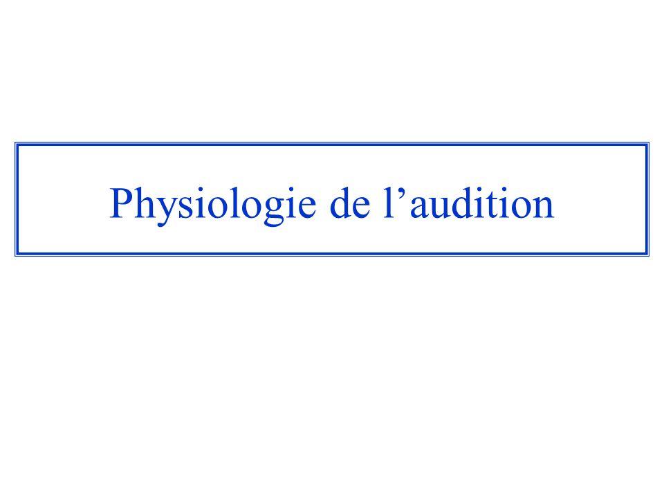 Physiologie de laudition