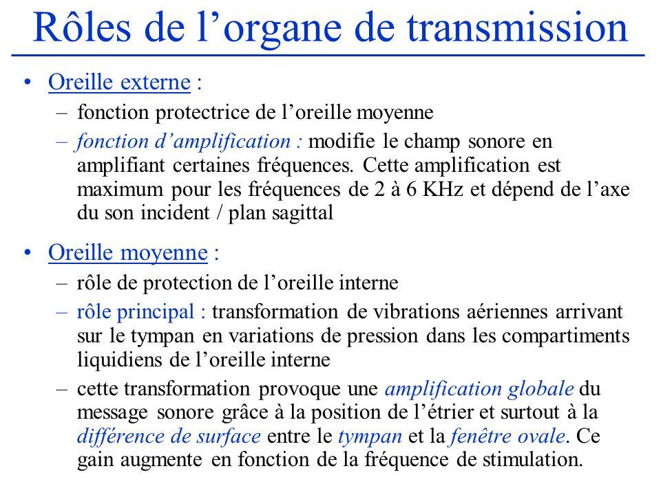 Rôles de lorgane de transmission Oreille externe : –fonction protectrice de loreille moyenne –fonction damplification : modifie le champ sonore en amp