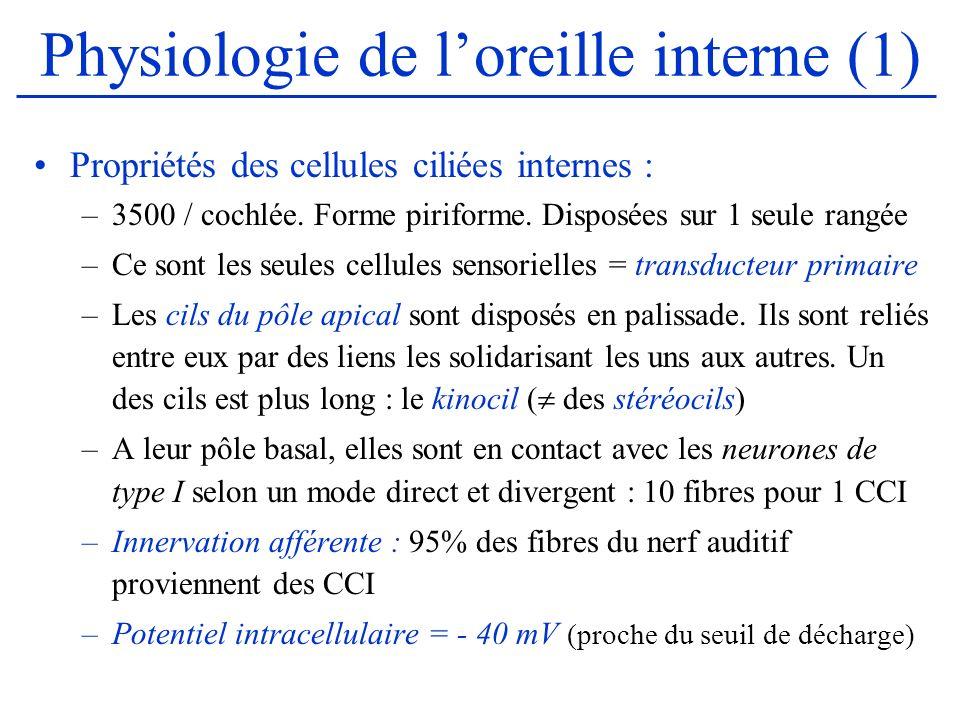 Physiologie de loreille interne (1) Propriétés des cellules ciliées internes : –3500 / cochlée. Forme piriforme. Disposées sur 1 seule rangée –Ce sont