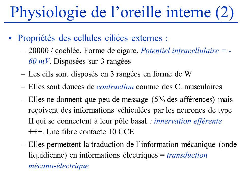 Physiologie de loreille interne (2) Propriétés des cellules ciliées externes : –20000 / cochlée. Forme de cigare. Potentiel intracellulaire = - 60 mV.