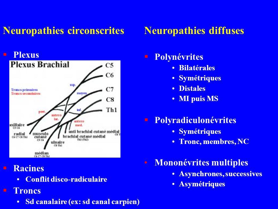 Neuropathies circonscrites Plexus Racines Conflit disco-radiculaire Troncs Sd canalaire (ex: sd canal carpien) Neuropathies diffuses Polynévrites Bila