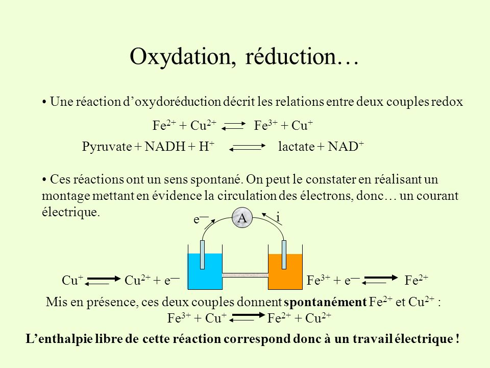 Oxydation, réduction… Une réaction doxydoréduction décrit les relations entre deux couples redox Fe 2+ + Cu 2+ Fe 3+ + Cu + Pyruvate + NADH + H + lact