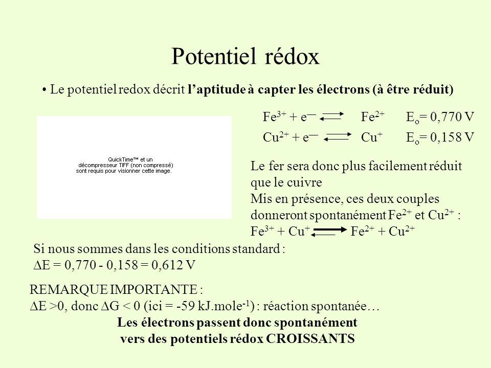 Potentiel rédox Le potentiel redox décrit laptitude à capter les électrons (à être réduit) Fe 3+ + e Fe 2+ Cu 2+ + e Cu + E o = 0,770 V E o = 0,158 V