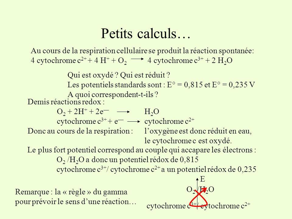 Le plus fort potentiel correspond au couple qui accapare les électrons : O 2 /H 2 O a donc un potentiel rédox de 0,815 cytochrome c 3+ / cytochrome c