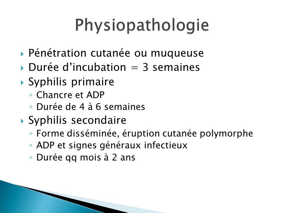 Pénétration cutanée ou muqueuse Durée dincubation = 3 semaines Syphilis primaire Chancre et ADP Durée de 4 à 6 semaines Syphilis secondaire Forme diss
