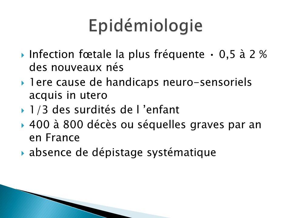 Infection fœtale la plus fréquente 0,5 à 2 % des nouveaux nés 1ere cause de handicaps neuro-sensoriels acquis in utero 1/3 des surdités de l enfant 40
