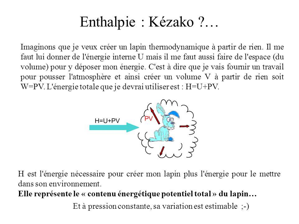 Imaginons que je veux créer un lapin thermodynamique à partir de rien. Il me faut lui donner de l'énergie interne U mais il me faut aussi faire de l'e