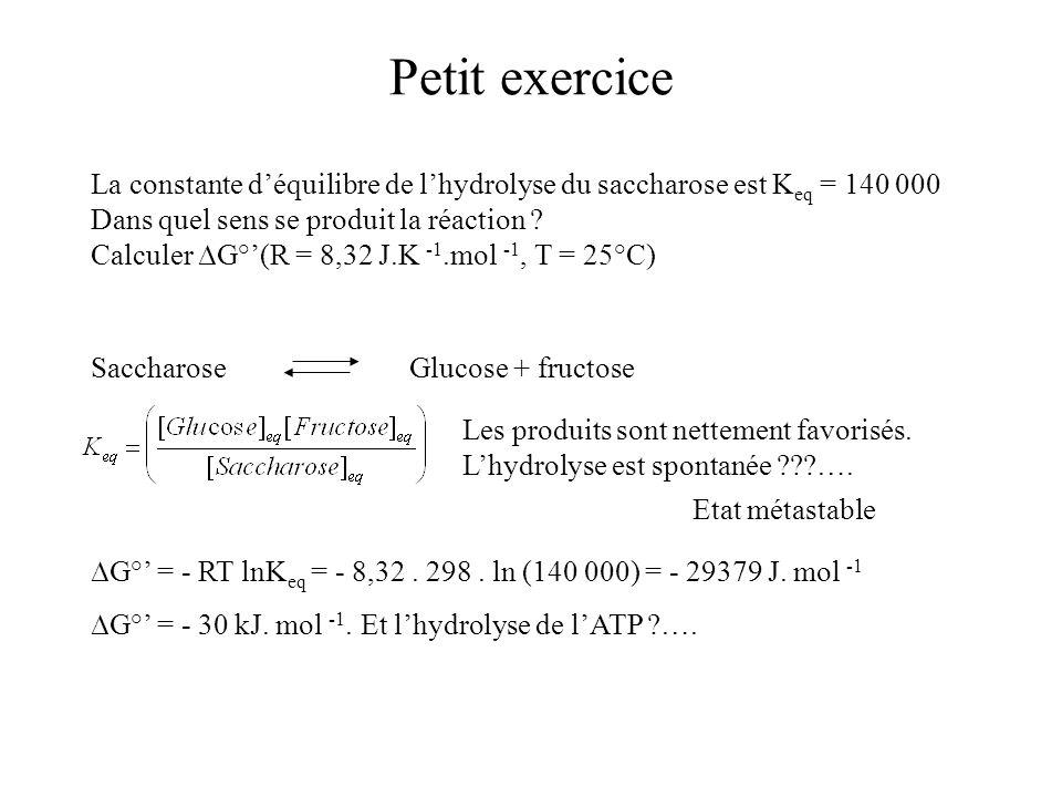 Petit exercice La constante déquilibre de lhydrolyse du saccharose est K eq = 140 000 Dans quel sens se produit la réaction ? Calculer G°(R = 8,32 J.K