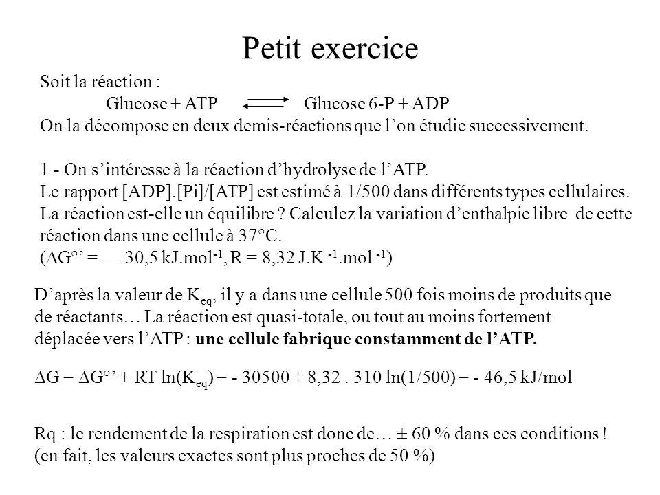 Petit exercice Soit la réaction : Glucose + ATPGlucose 6-P + ADP On la décompose en deux demis-réactions que lon étudie successivement. 1 - On sintére