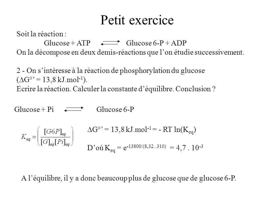 Petit exercice Soit la réaction : Glucose + ATPGlucose 6-P + ADP On la décompose en deux demis-réactions que lon étudie successivement. 2 - On sintére