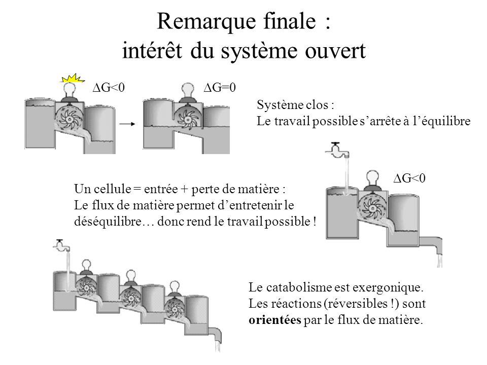 Remarque finale : intérêt du système ouvert Système clos : Le travail possible sarrête à léquilibre Un cellule = entrée + perte de matière : Le flux d