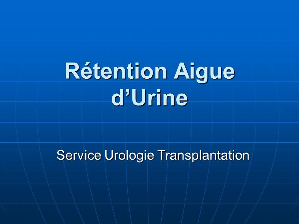 Rétention Aigue dUrine Service Urologie Transplantation