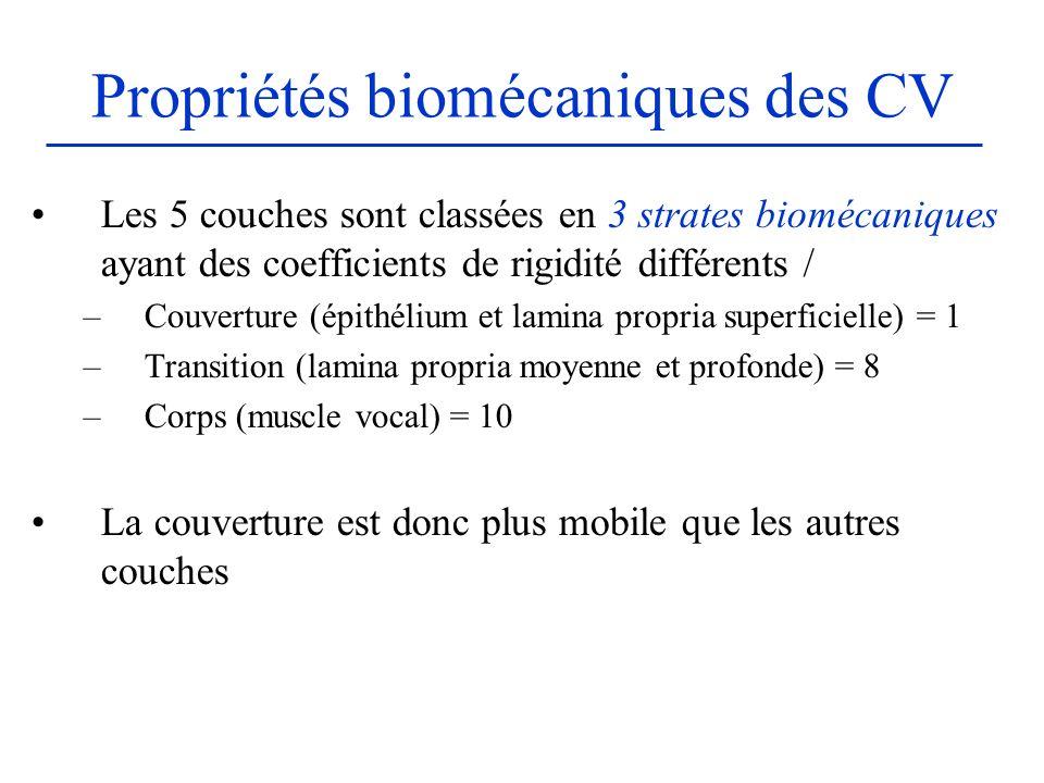 Propriétés biomécaniques des CV Les 5 couches sont classées en 3 strates biomécaniques ayant des coefficients de rigidité différents / –Couverture (ép