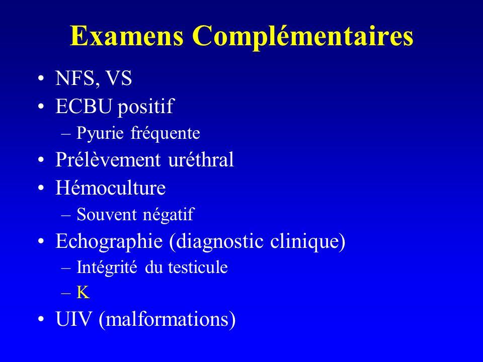 Examens Complémentaires NFS, VS ECBU positif –Pyurie fréquente Prélèvement uréthral Hémoculture –Souvent négatif Echographie (diagnostic clinique) –In